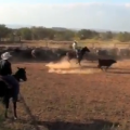 VIDEO: Renderbrook Spade Ranch Hands / Cutting Cattle